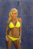Blonde Bikini Model Royalty Free Stock Photo