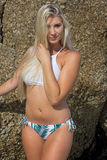 Blonde Bombshell Stock Images
