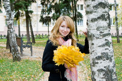 Blonde with bouquet from yellow leaves autumn park. Blonde with a bouquet from yellow leaves in an autumn park Stock Photos