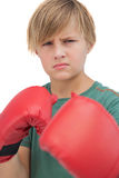 Blonde boy with boxing gloves Royalty Free Stock Image