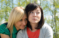 Blonde and brunette Stock Photos