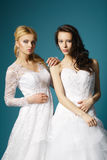 Blonde and brunette bride on blue background Stock Photo