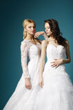 Blonde and brunette bride on blue background Royalty Free Stock Images