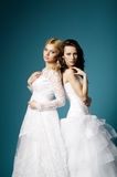 Blonde and brunette bride on blue background Royalty Free Stock Photography
