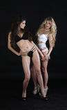 Blonde and brunette standing next to each other Royalty Free Stock Photos