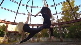 Blonde and brunette in tight clothes perform tricks of aerial acrobatics. Two women are engaged in aerial acrobatics in nature stock footage
