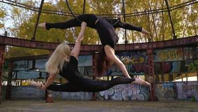 The blonde and the brunette together are engaged in aerial acrobatics, do twine in air, the blonde holds on to the. Two sports women together do aerial stock video footage