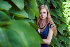 Blonde caucasian woman lost among ivy leaves Royalty Free Stock Images