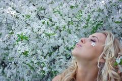 Blonde in cherry garden Stock Image