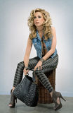 Blonde con un sacchetto Immagini Stock