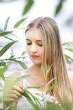 Blonde da mulher através dos arbustos verdes da folha Imagem de Stock Royalty Free