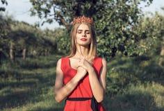 Blonde dans la robe rouge lumineuse image stock