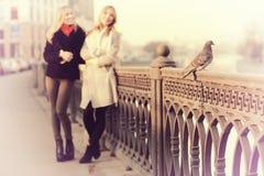 Blonde deux gaie pour une promenade Photo libre de droits