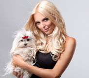 Blonde with dog. Beautiful Young Woman with Long Blonde Hair holding small dog Royalty Free Stock Photo