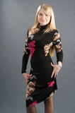 The blonde in an elegant dress. Royalty Free Stock Photos