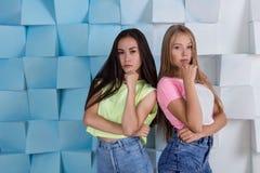 Blonde en donkerbruine arrogante meisjes Royalty-vrije Stock Afbeelding