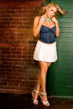 Blonde en mini falda atractiva Fotos de archivo