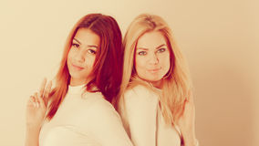 Blonde en mulatmeisje samen Stock Fotografie