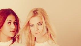 Blonde en mulatmeisje samen Royalty-vrije Stock Afbeeldingen