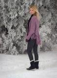 Blonde et hiver photographie stock