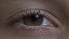 Blonde eye stock video footage