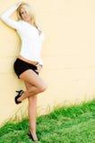 Blonde Fashion Model Stock Photos