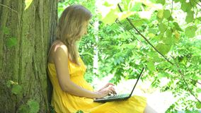 Blonde female in yellow dress chatting on notebook computer sitting lean on park tree. 4K stock video