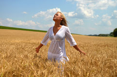 Blonde Frau auf dem Weizengebiet Stockfotos