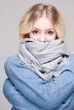 Blonde Frau in der warmen Kleidung Stockbilder