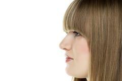 Blonde Frau des Gesichtes Lizenzfreie Stockbilder