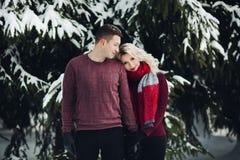 Blonde Frau, die auf Schulter ihren Ehemann am Winterwald lehnt lizenzfreie stockfotografie
