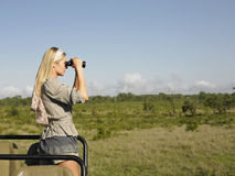 Blonde Frau, die durch Ferngläser im Jeep schaut Lizenzfreies Stockfoto