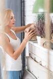 Blonde Frau, die oben verziertes Regal kleidet Stockfotografie