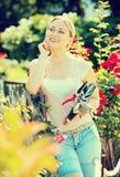 Blonde Frau, die um roten Rosenbusch sich kümmert Stockfotos