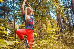 Blonde Frau, die Yoga im Wald tut Lizenzfreie Stockfotos