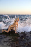 Blonde Frau im Bikini auf Felsen Lizenzfreie Stockbilder