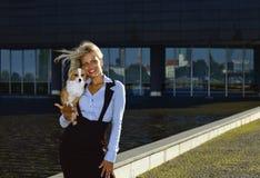 blonde Frau mit Chihuahua. Stockbild