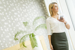 Blonde Frau mit Handy im Büro Stockbilder