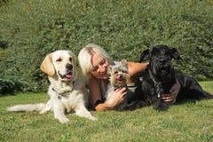 Blonde Frau und drei Hunde am Rasen. Stockfotografie