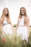 Blonde Freundinnen, die auf dem grünen Gebiet gehen Stockfotografie