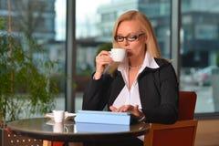 Blonde Geschäftsfraufunktion Atractive von mittlerem Alter Lizenzfreies Stockbild