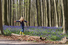 Blonde girl and bluebells at Hallerbos woods Royalty Free Stock Photos