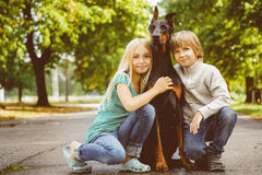 Blonde girl and boy hugs beloved dog or doberman Royalty Free Stock Photography