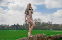 Blonde girl in the park stock photos