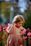 Blonde girl with pigtails in a pink dress among beautiful flowers royalty free stock photo