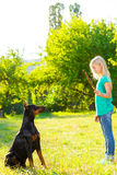 Blonde girl playing with the dog or doberman in Stock Photography