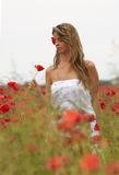 Blonde Girl in the Poppies Field Stock Image
