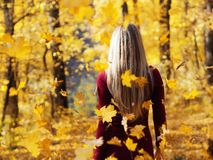 Blonde girl portrait at the autumn forest back view at falling leaves. The Blonde girl portrait at the autumn forest back view at falling leaves royalty free stock image