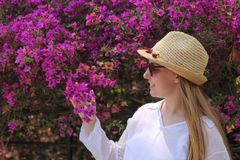 Blonde girl posing and watching bougainvillea stock photos