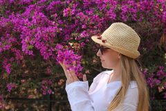 Blonde girl posing and watching bougainvillea stock image